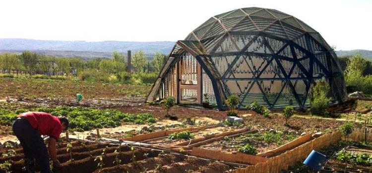 Otxarkoaga Auzo Green Factory activa soluciones basadas en la naturaleza